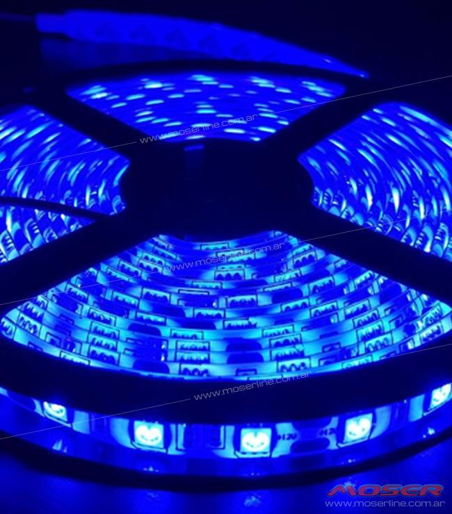 Rollo de Led 5050 x metro - Azul - Imagen 1