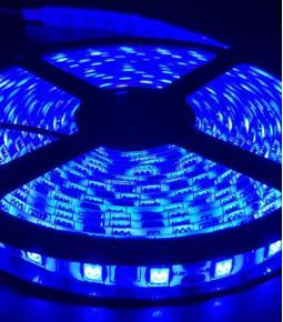 Rollo de Led 5050 x metro - Azul